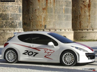 Tuning Peugeot 207 RCup