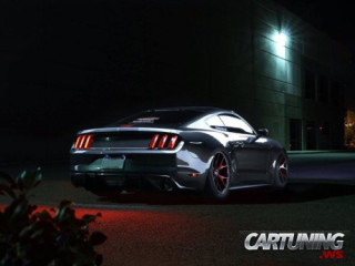 Tuning Ford Mustang GT 5.0 2015