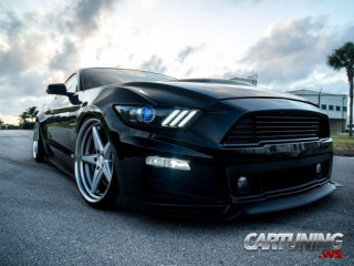 Stance Ford Mustang 2016