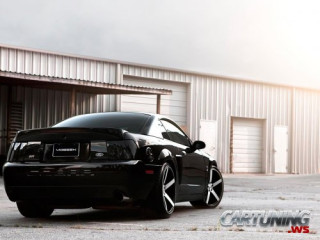 Stance Ford Mustang Cobra 2004