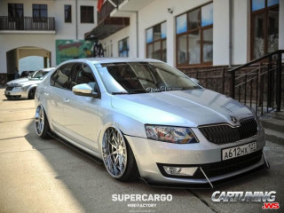 Skoda Octavia A7 on Air