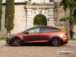 Tuning Tesla Model X Chameleon