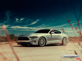 Tuning Ford Mustang GT 5.0 2021