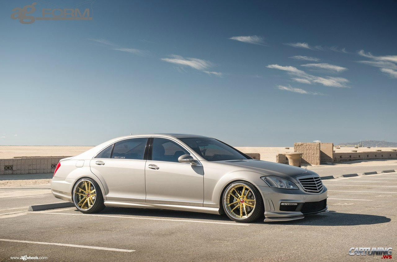 Stance Mercedes Benz S550 W221