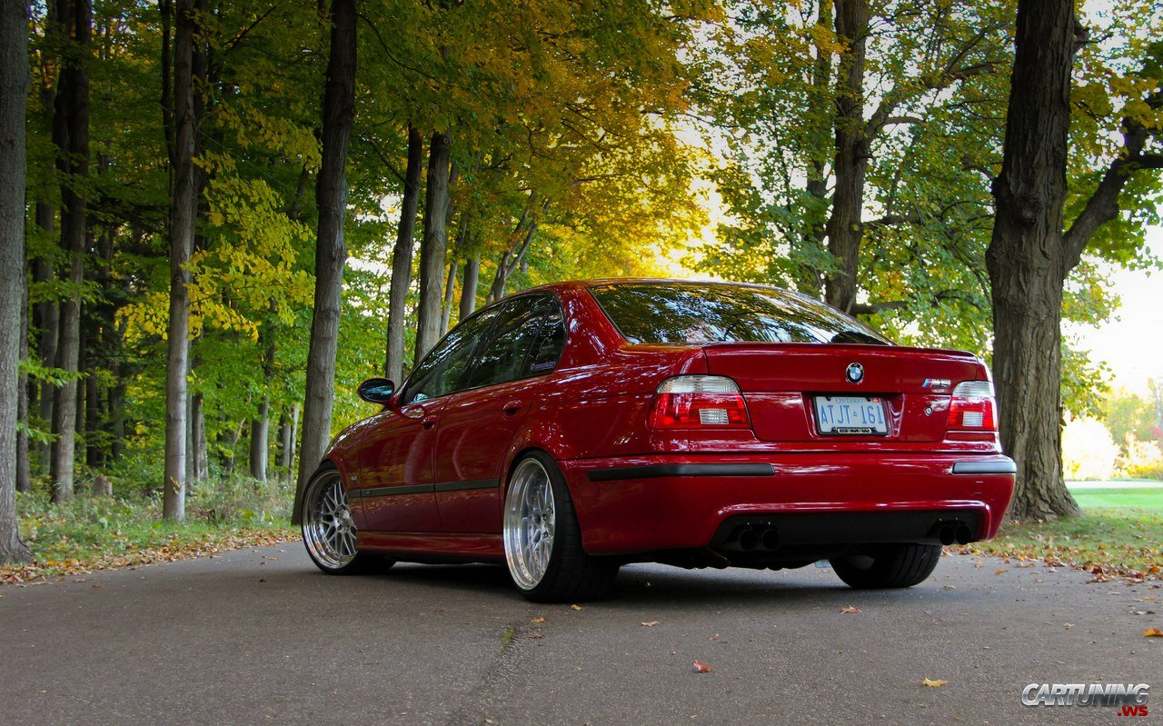 bmw m5 e39 stance cartuning best car tuning photos. Black Bedroom Furniture Sets. Home Design Ideas