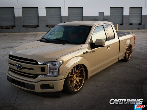 Stanced Ford F150 2017