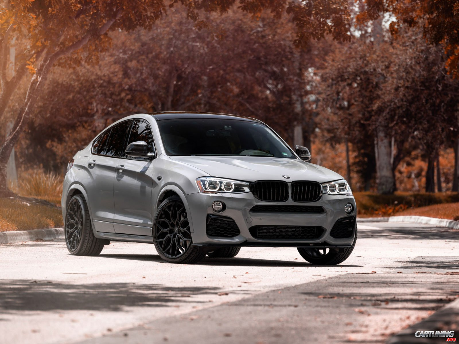 Tuning BMW X4 F26 2014, front